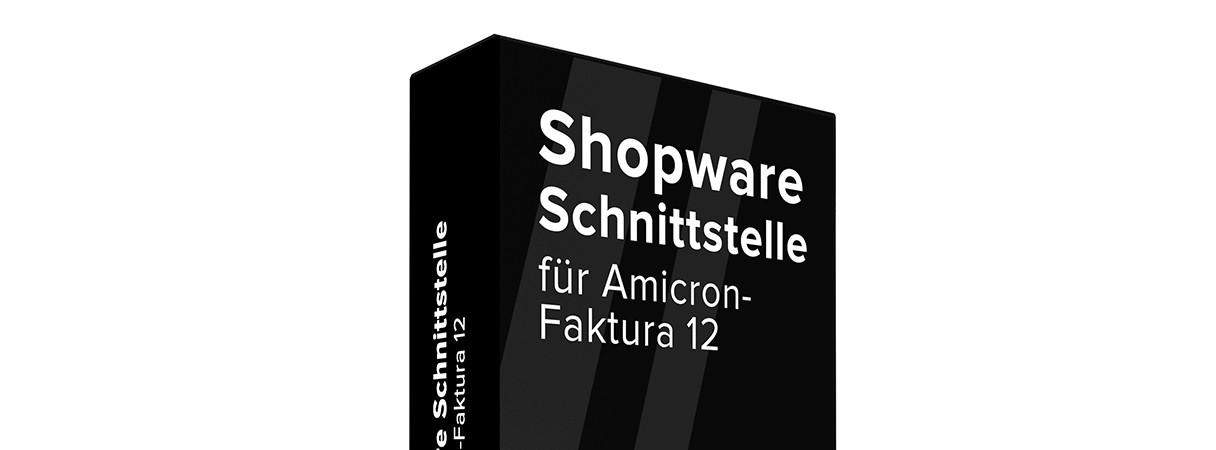 Amicron-Faktura-Schnittstelle